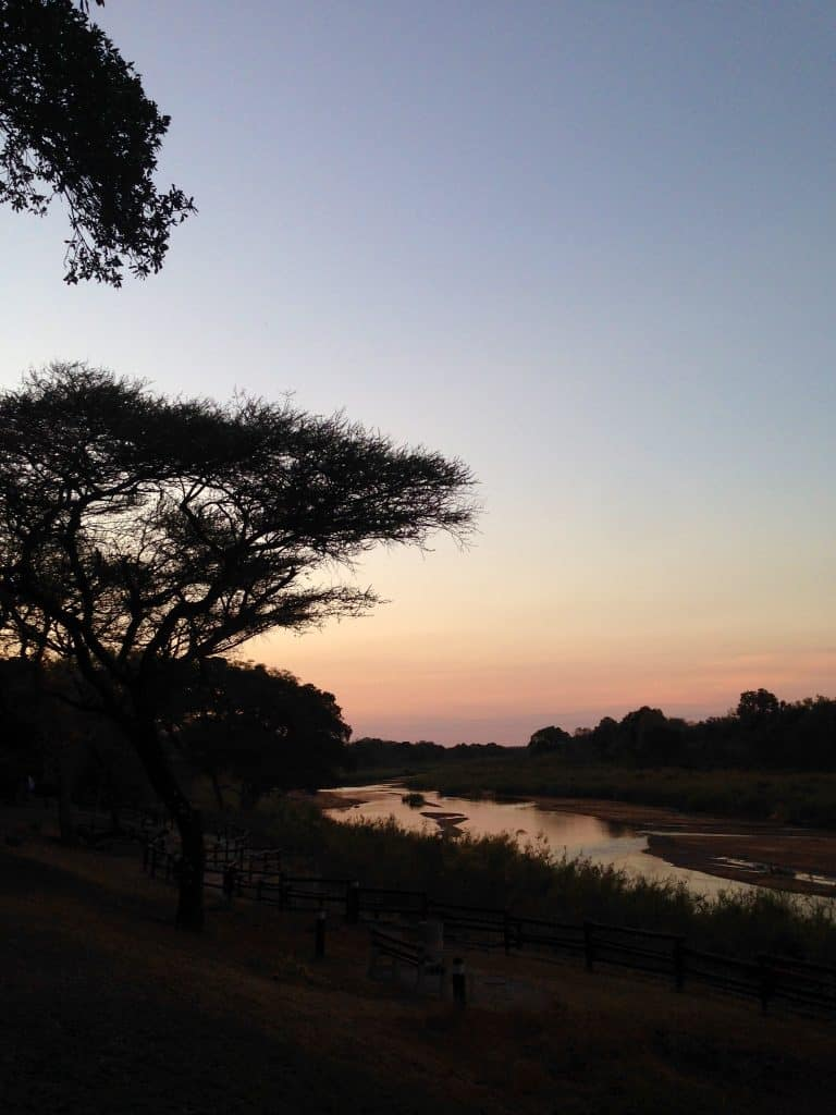 Organizzare un Safari al Kruger