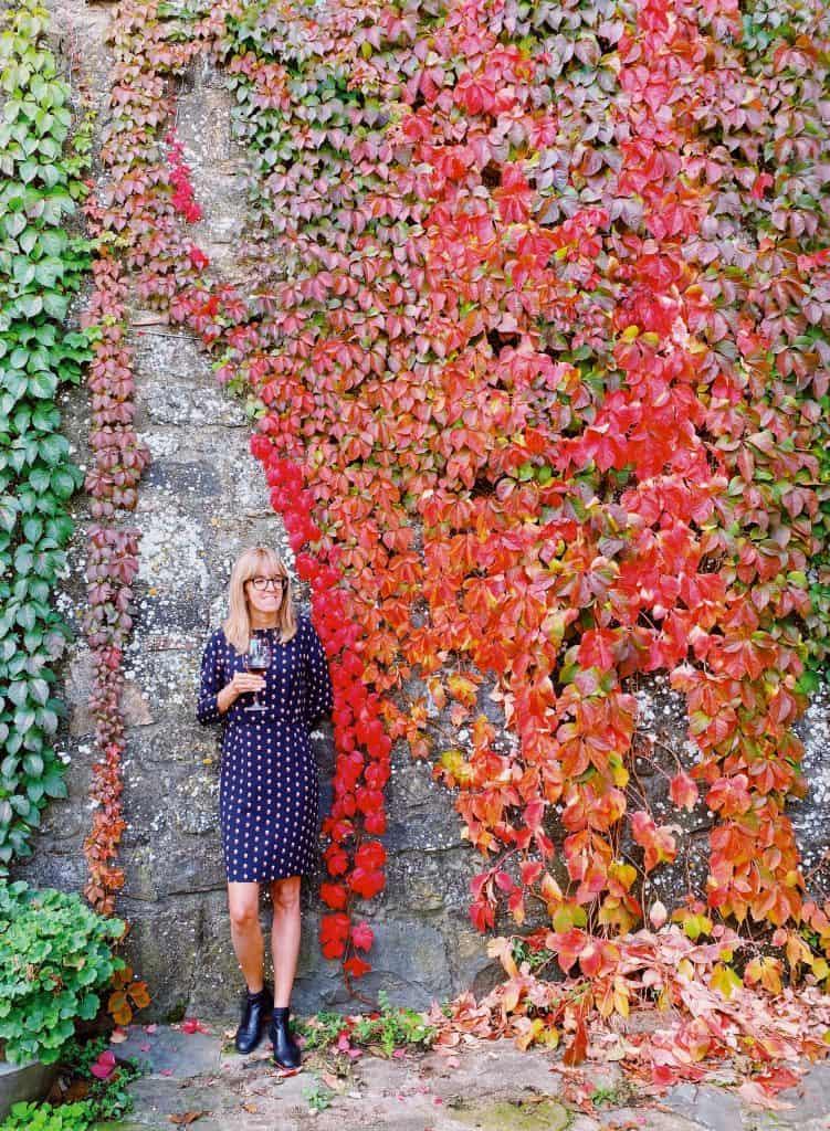 Visita a una cantina di Brunello a Montalcino