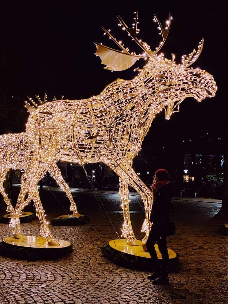 Stoccolma- le luci di Natale